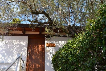 Casa Vacanze Tramontana - Palinuro - Haus