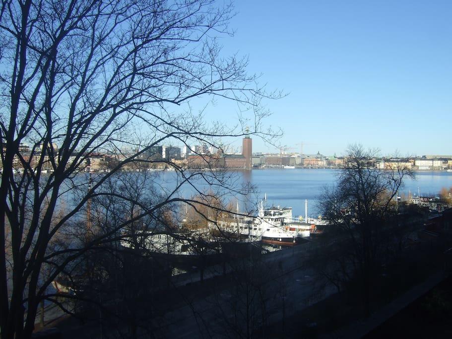 Window view (City hall, autumn)