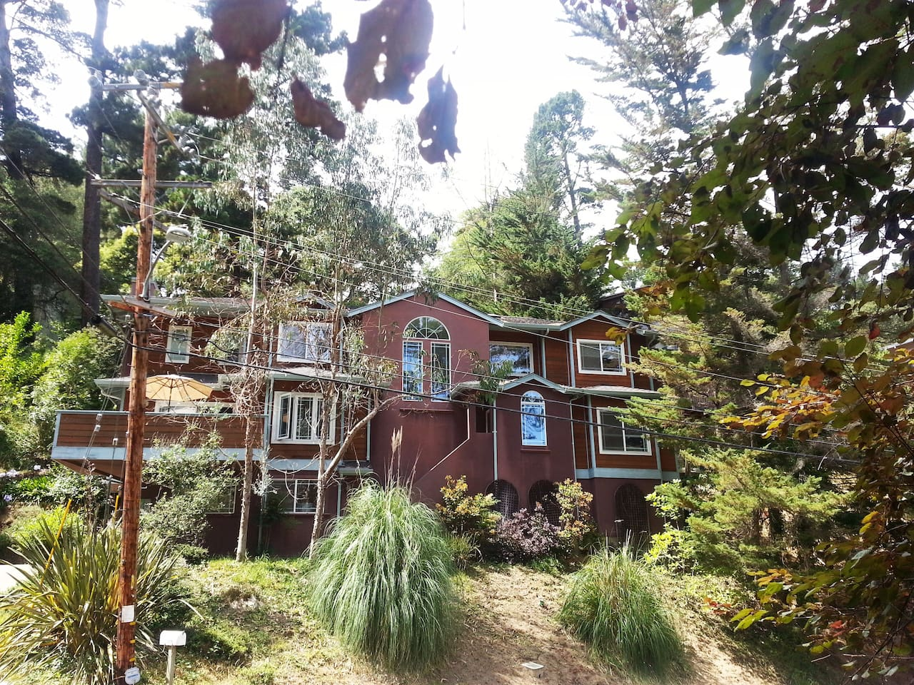 Oakland Hills Guest Retreat Artists' Home