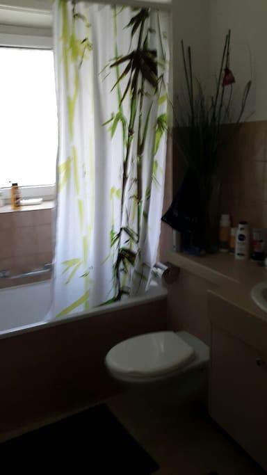Bathroom (bath tub, toilet, wash basin)