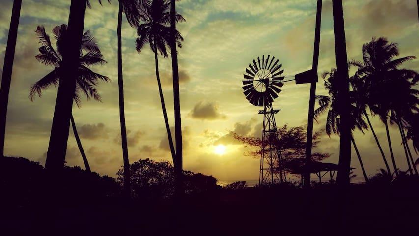Millbrook Farm House Terengganu - Dungun, Merchang - Guesthouse