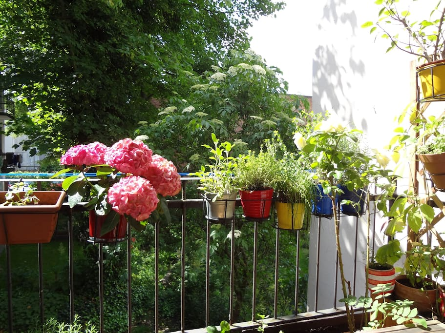 Der Balkon zum Garten