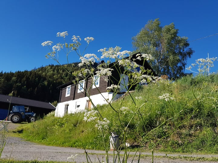 Gammel hytte på økologisk gård.
