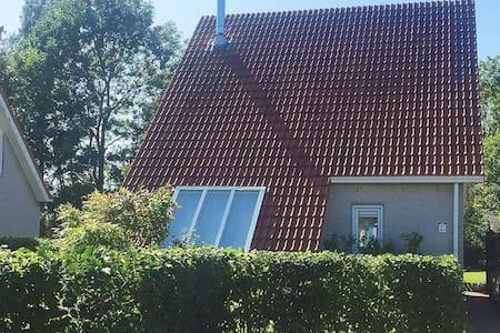 Ferienhaus Strand 40 - Scharendijke - 一軒家
