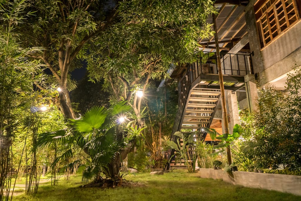 Our garden by night