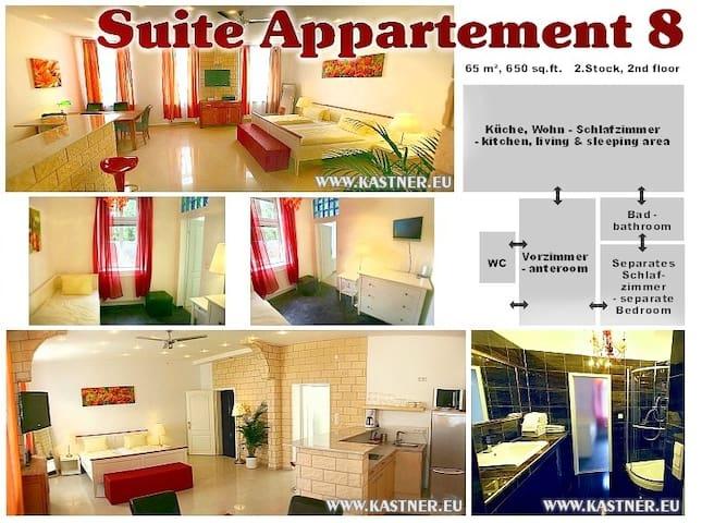 Nice Suite Apartment -Free Parking! - Viena - Departamento