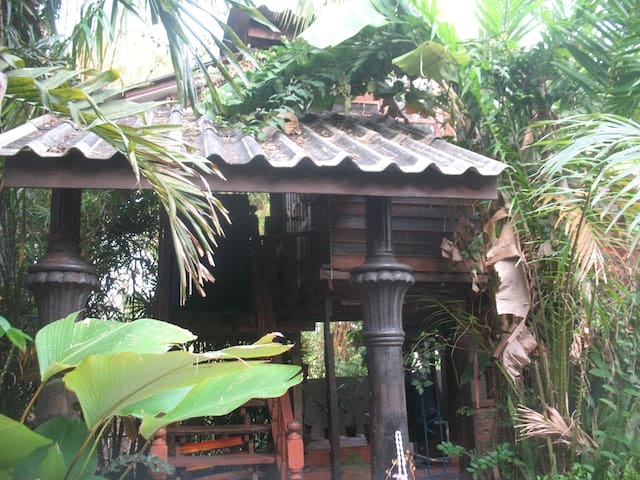 Teak Wood House in the Palms