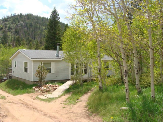 Black Bear Hollow is a dog friendly retreat! - Red Feather Lakes - House