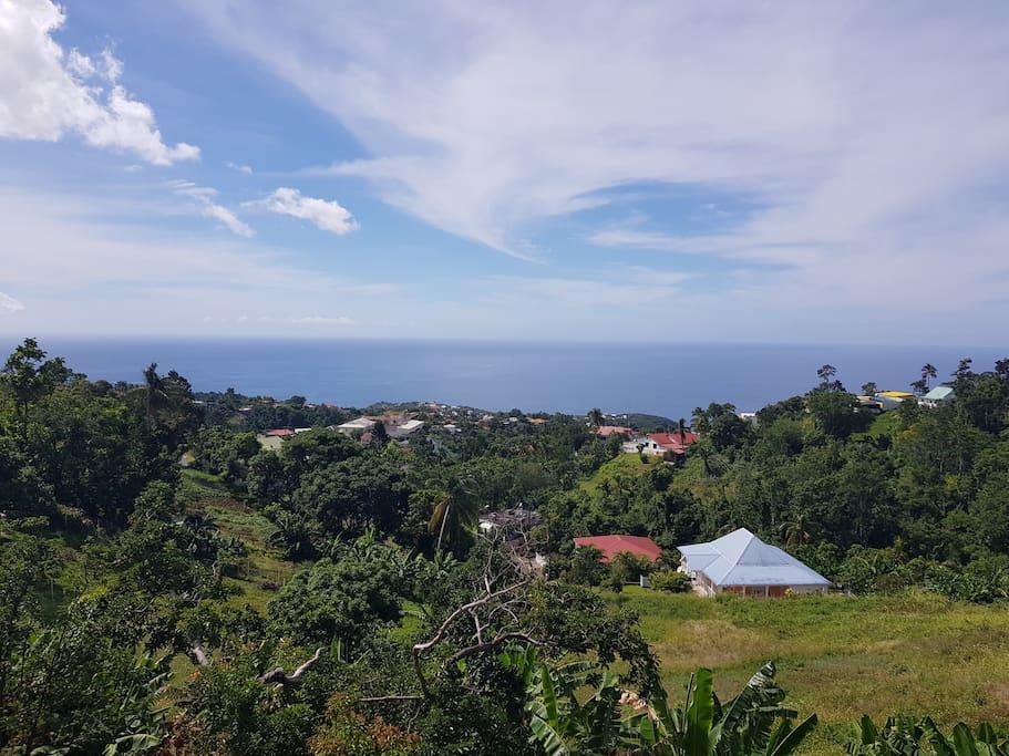 Belle vue sur la mer des Caraïbes