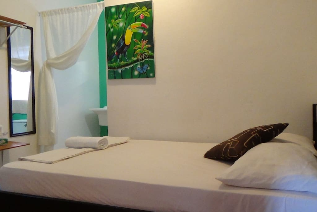Rainforest Room