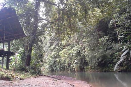 Tamandua Biological Station - La Bijagua, Bahía Drake
