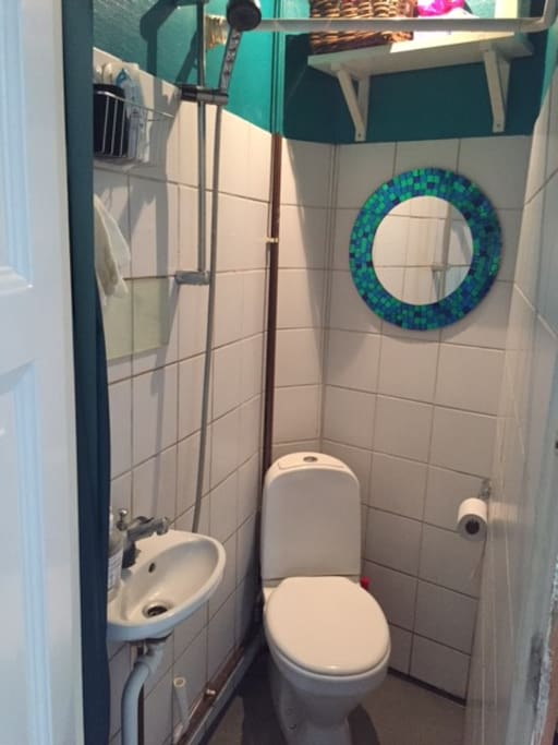 Small toilet with shower