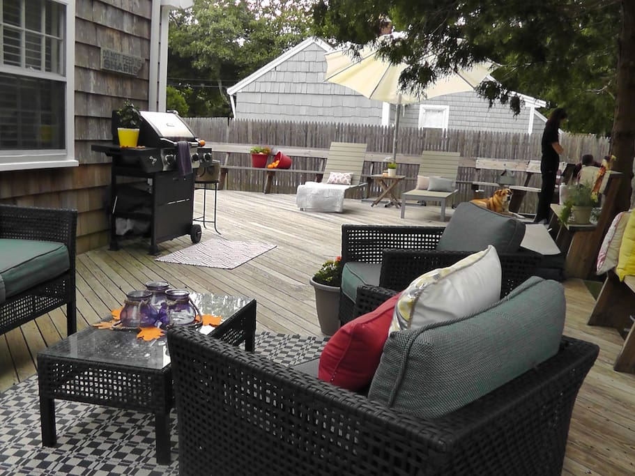 Fenced in back yard for your furry friends and a quiet deck to lounge on.