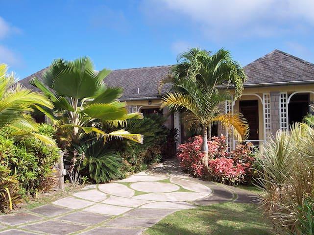 Mollybon - Nevis - House