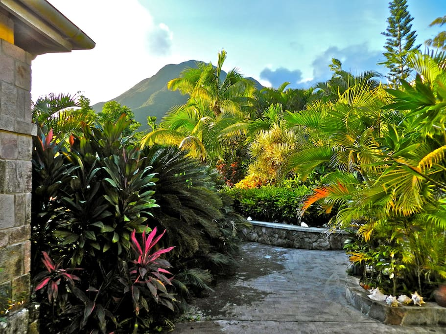 Courtyard and Mount Nevis