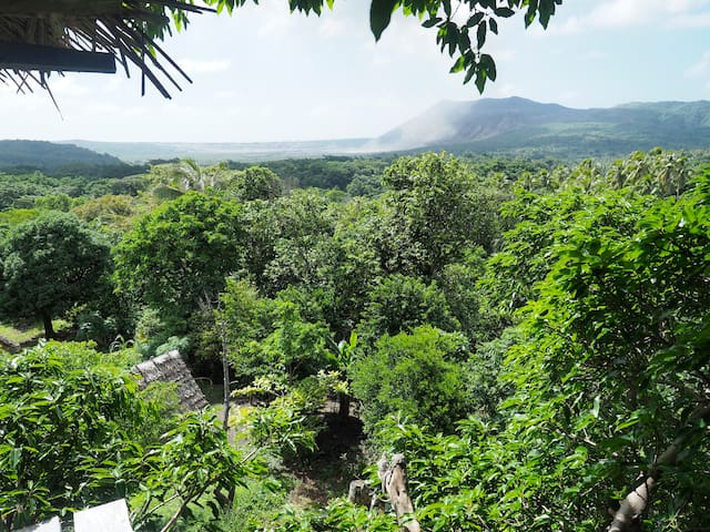 Tree house with Volcano view