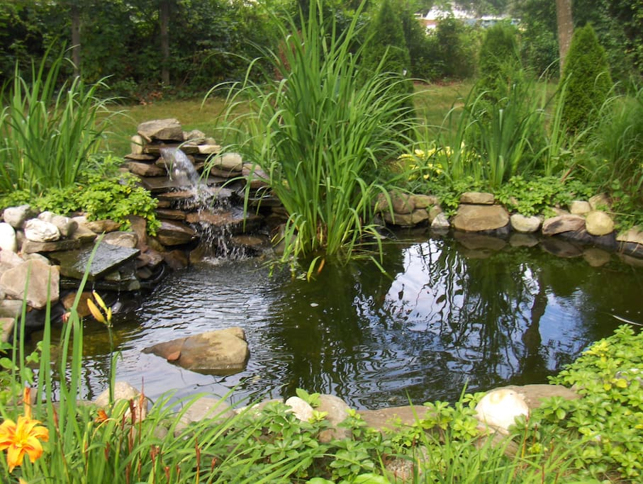 Waterfall fish pond