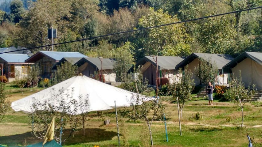 Nature's Outpost Camps, Manali - Manali - Stan