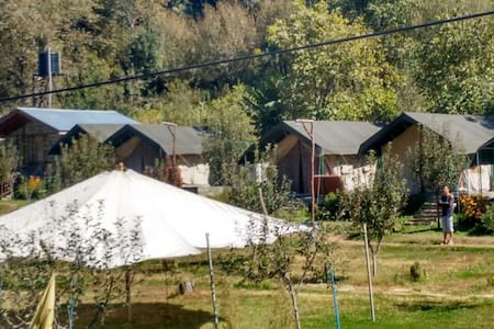 Nature's Outpost Camps, Manali - Manali