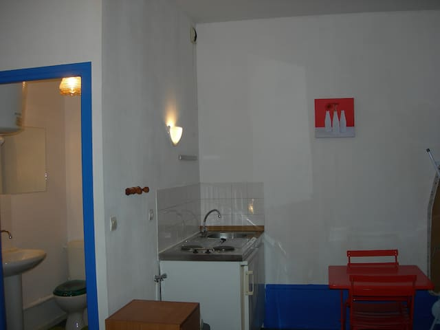 Beau studio centre petite ville - Condrieu - House