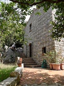 La Ripa di Campo Soriano : L' Olmo (the Elm) - Terracina - Villa