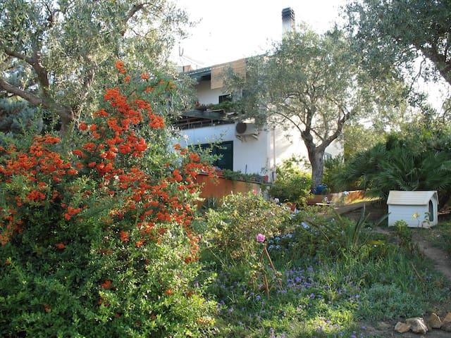Appartamento in villa tra gli ulivi