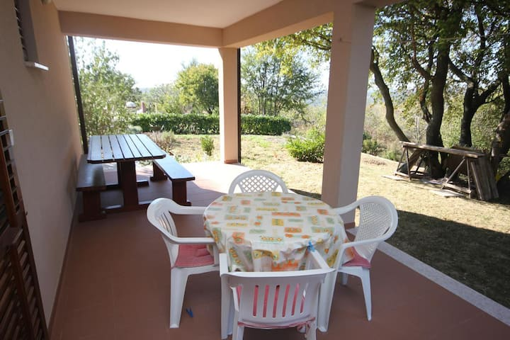 One bedroom apartment with terrace Presika, Labin (A-7390-c)