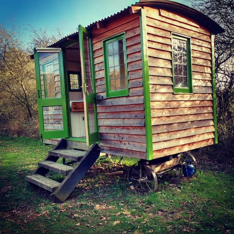 The Shepherd's Hut in the orchard, near Newtown