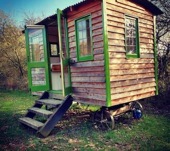 The Shepherd's Hut in the orchard, near Newtown - 纽镇(Newtown) - 小木屋