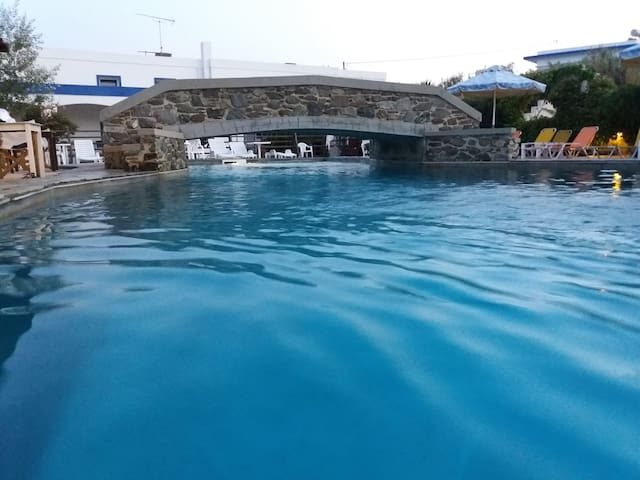 cozy home with swimming pool