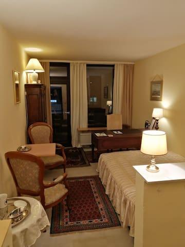 1 Zimmer Appartment + grosser Balkon