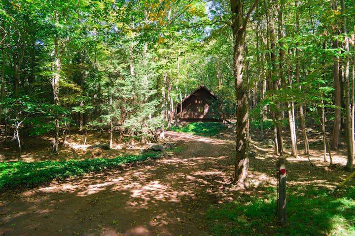 Secluded Catskills Mtn Cabin - Belleayre Village