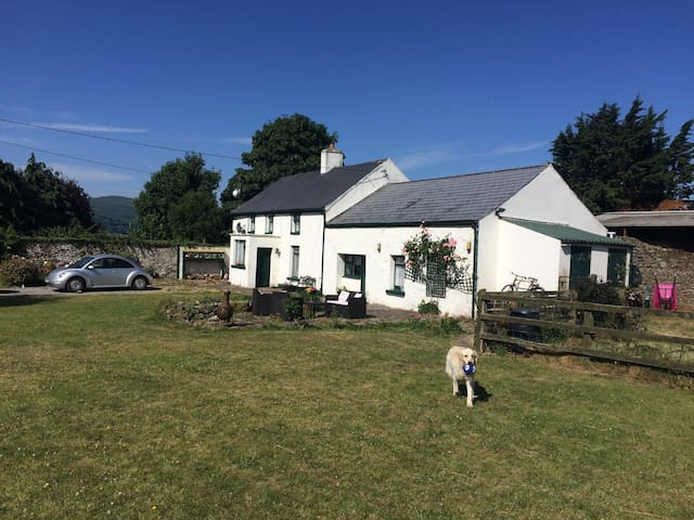 Knockgraffon, Cahir, Co Tipperary -  Cashel