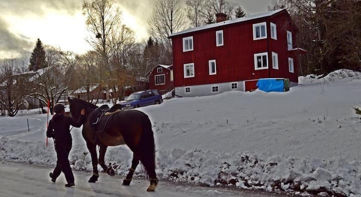 MUSES BNB in Bergvik (Sunnanå) of Hälsingland