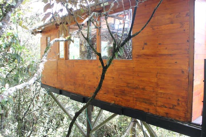 La  cabaña del árbol del Cerro Verde.  ECORREFUGIO