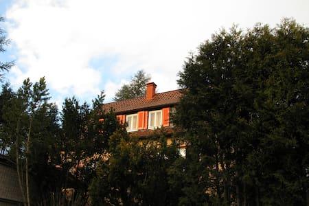 Gästehaus Nico am Fuße des Ersbergs - Nürtingen - Appartement