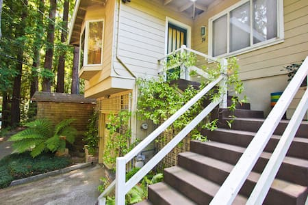 Artist Home in the Redwoods  - Larkspur