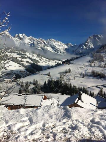 Ski & Summer sports, spacious flat  - Bachwinkl - Pis