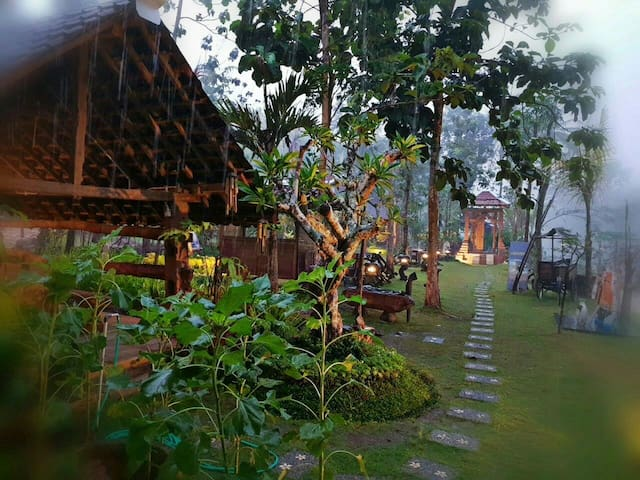 Wulenpari, nature and culture - Janaka