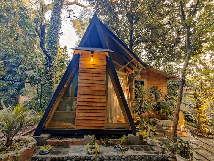 """A"" Frame Tiny-cozy wooden Glamp under a Tree 🌳"
