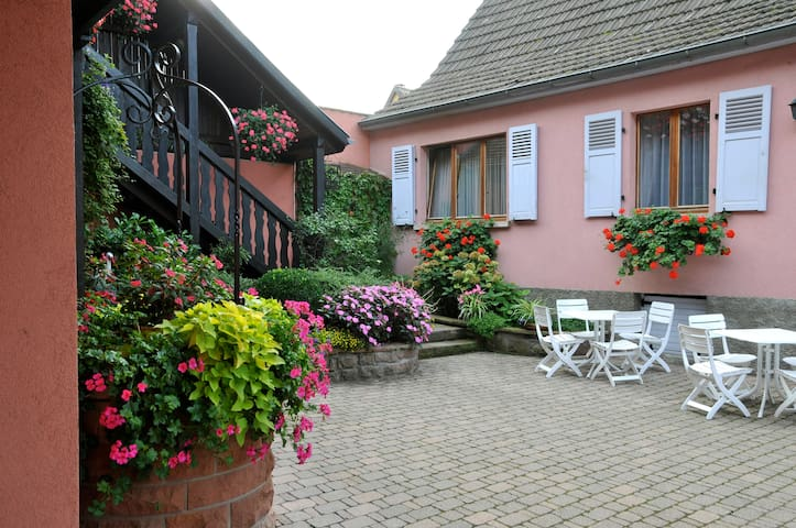 Gîtes Weyer Appartement n°3 - Bergheim - Apartment