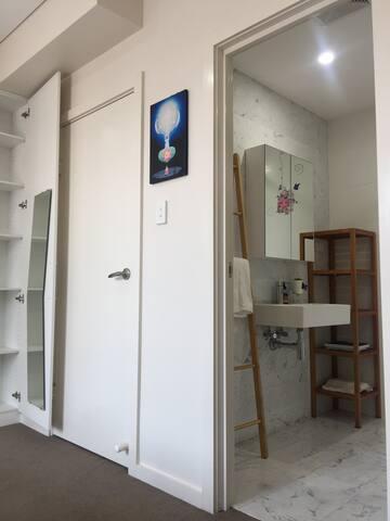 the mirror, storage, door & bathroom