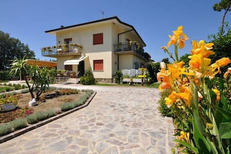 B&B Miami Beach - Pietrasanta - Bed & Breakfast