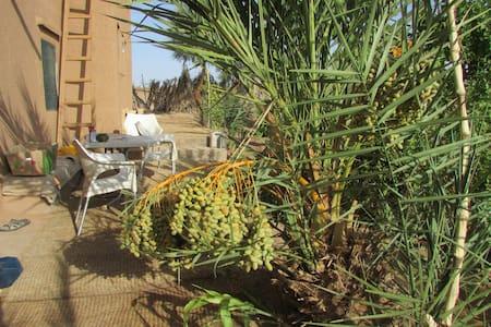 Fleur d*Oasis - Einfach Sein auf Hof bei Zagora