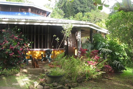 Tropical Lodge in Tranquil Garden - Trafalgar