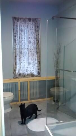 Modern newly renovated bathroom