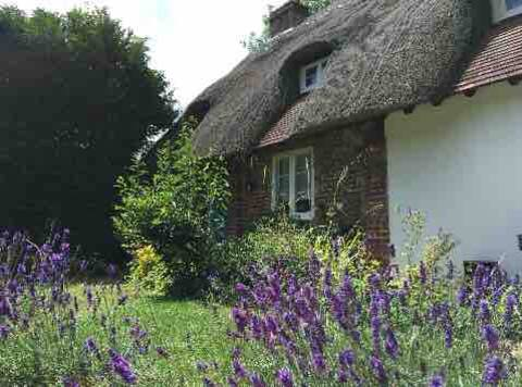 Single room, listed Cottage, Winchester, parking