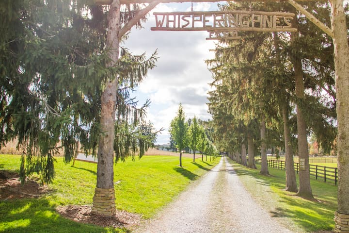 Glamping at Whispering Pines Farm - Cabot - Stan