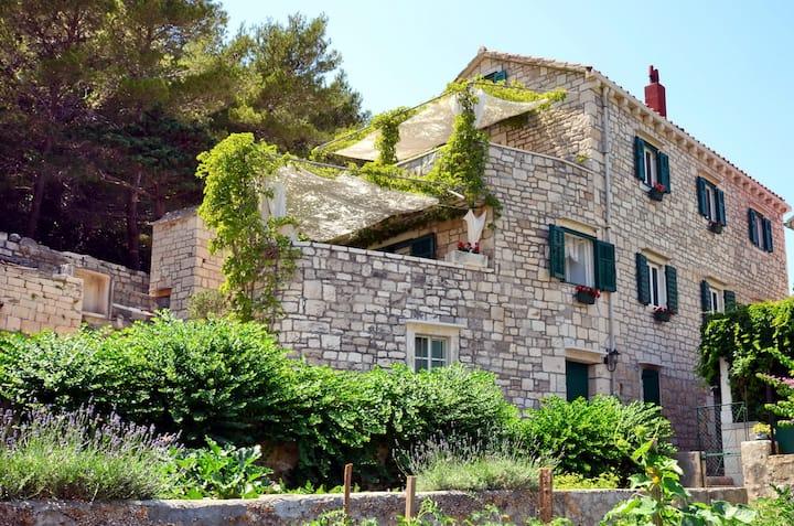 Stone Villa Povlja with Sea View #4