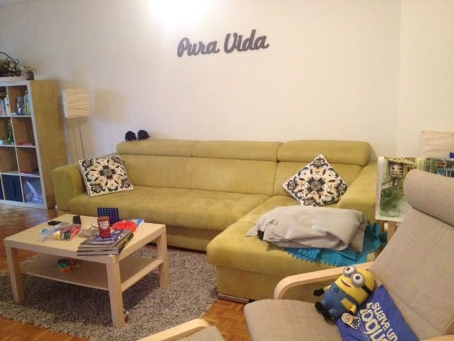 Private room in spacious apartment - Genève - Appartement